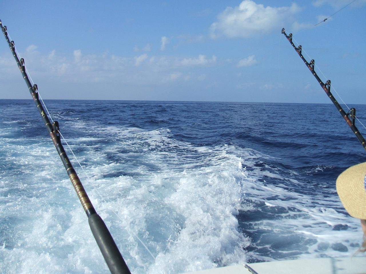 fishing-577514_1280